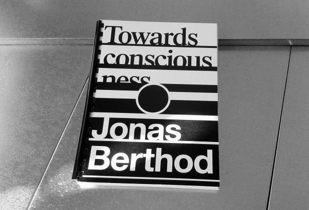 Jonas Berthod – Theoretical thesis 1555