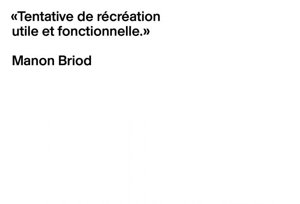 Theoretical thesis, Manon Briod 3385