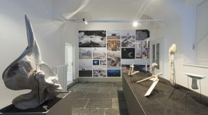 Master Product design, Milan, Spazio Orso, Exhibition, Iceland Whale Bone Project 4038